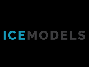 Ice Models